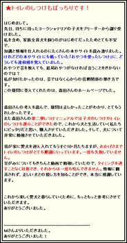morita_m.jpg